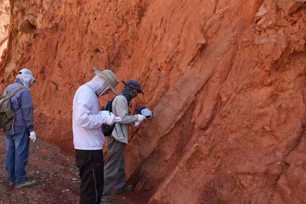 小型土壤检测实验室建设仪器设备配套方案一