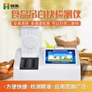 食品吊白块检测仪应用